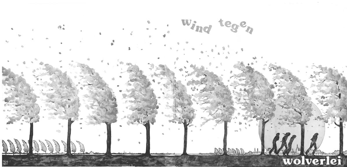 Wind tegen