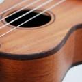 Ukelele - <em>De grootheid van een klein instrument</em>