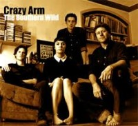 Crazy Arm - The Southern Wild