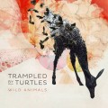 Tramped by Turles - Wild animals