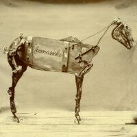 Chadwick_Stokes_Comanche1500_grande