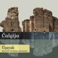 Wieringa Wikt en Weegt: <em>Çalgija en mijn herinnering aan de Balkan</em>